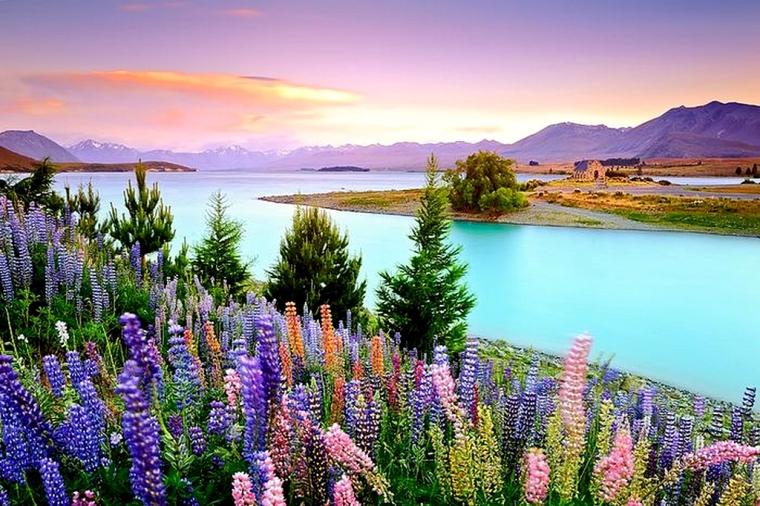 NZ-Lake-Tekapo