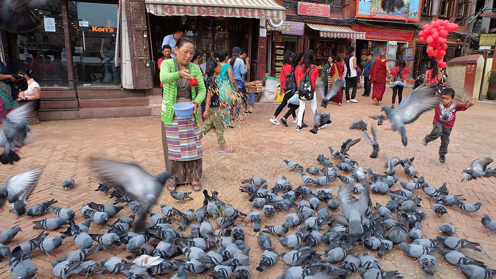 Nepal Unexpected Crush-18